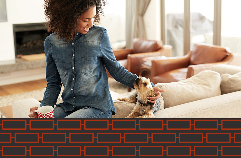 photo of woman on couch with coffee cup petting little beige dog with a black box under the photo with a series of connected red rectangles on top